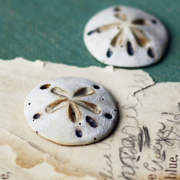 sand dollar pendants